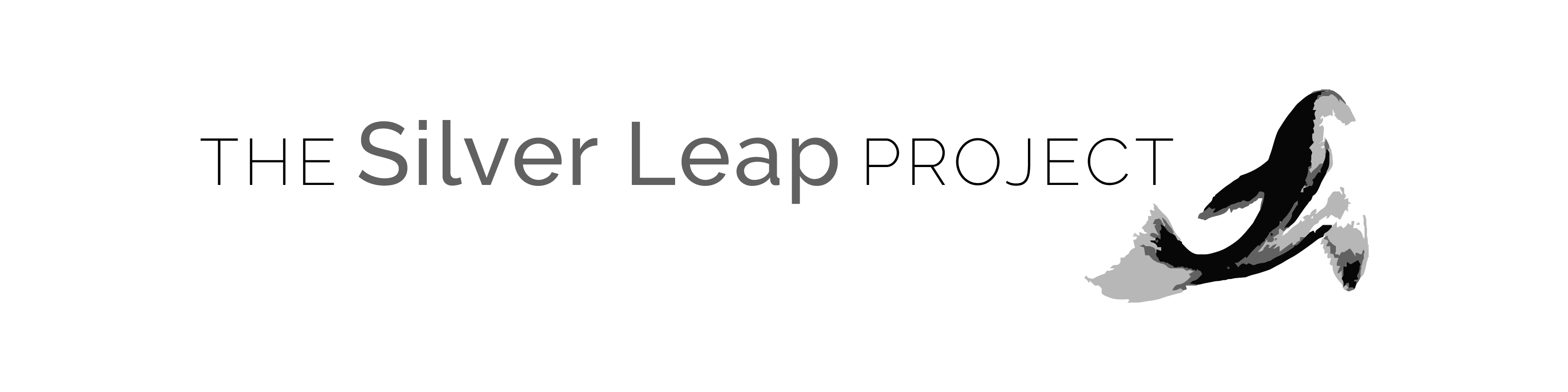 The Silver Leap Project
